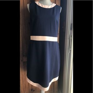 NWT Vince Camuto classic dress. Navy & pale pink.